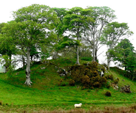 Mound on road to Ard Mhuire